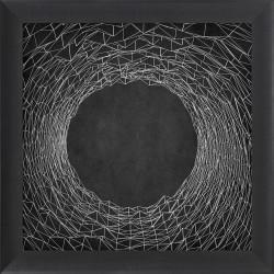 Obraz spider web