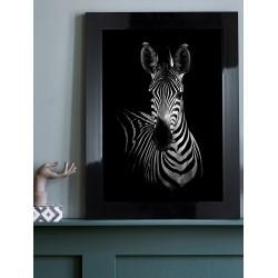 Obraz czarno-biała zebra