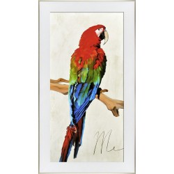 Obraz kolorowa papuga I
