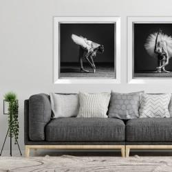 Obraz fotografia baletnica I