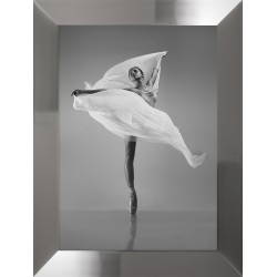 Obraz ballerina in dance I