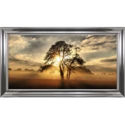Obraz drzewo w zachodzie...