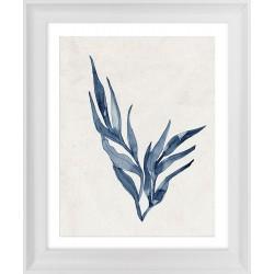 Obraz roślina morska II
