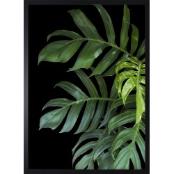 Obraz green tropical leaves II