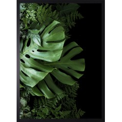 Obraz green tropical leaves I