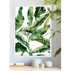 Obraz zielone liście bananowca