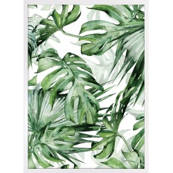 Obraz zielone liście monstery