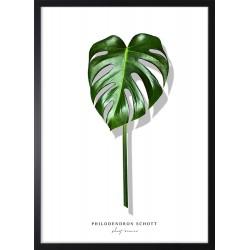 Obraz pojedynczy zielony...