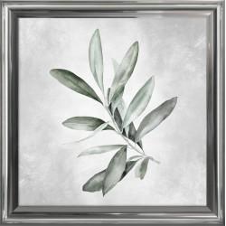 Obraz akwarelowa roślina III