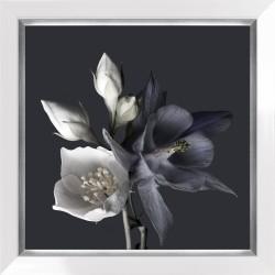 Obraz białe i fioletowe...