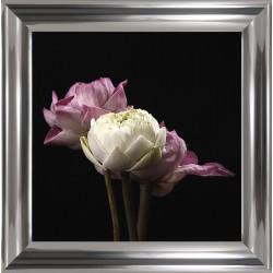 Obraz trzy kwiaty I