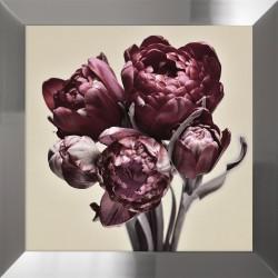 Obraz bordowe tulipany II