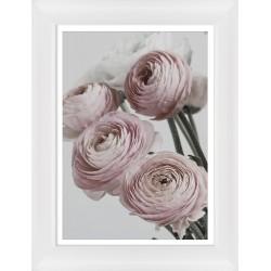 Obraz różowe i białe pełniki