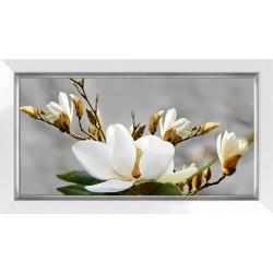 Obraz jasna magnolia