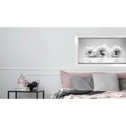 Obraz trzy białe róże