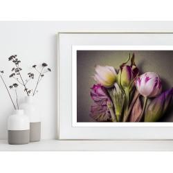 Obraz kompozycja z kolorowych kwiatów