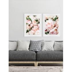 Obraz różowe peonie I