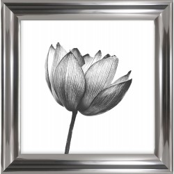 grafika z kwiatem