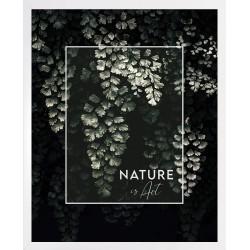 piękne gałązki drzew